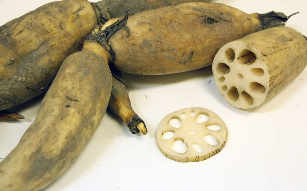 Lotus root is sweet, rich in starch, protein, vitamin C and B1.
