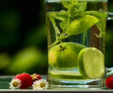 When various poisons affect our healthy lives, detoxification becomes an essential part.
