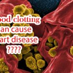 You must eat these 5 kinds of food to prevent blood clotting