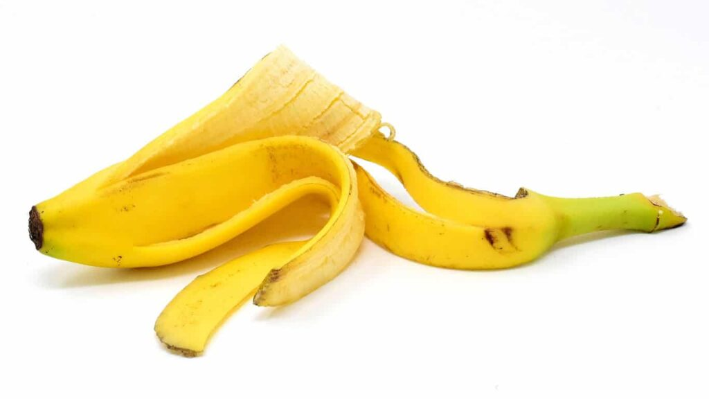 Banana peel contains cannabinoids. It can cure psoriasis caused by fungal and bacterial infections.