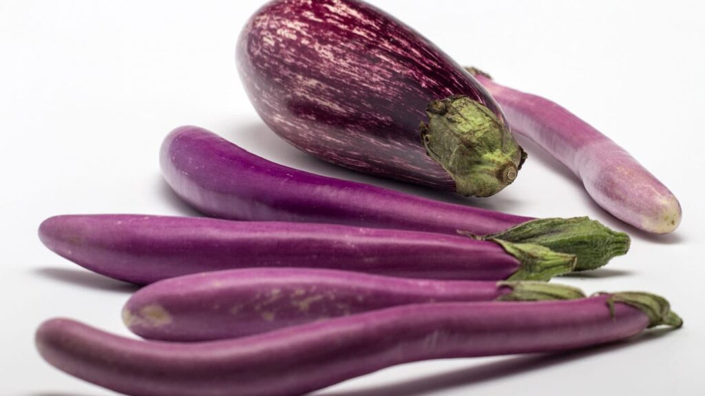 Eggplant is good food therapy for cardiovascular patients. A lot of nutrients contains in the eggplant skin.