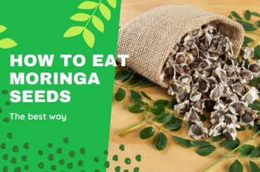 How to eat Moringa seeds? find out the best way 4