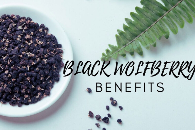 health value and effects of black wolfberry